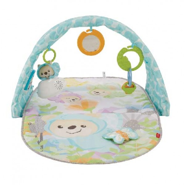 Fisher Price Butterfly Dreams 音樂遊戲墊